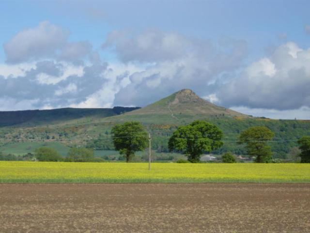 Our local landmark, Roseberry Topping. Beyond are the North Yorkshire Moors